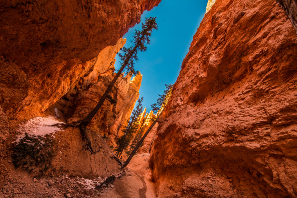 Bryce Canyon inside_